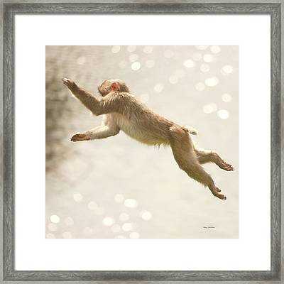 Framed Print featuring the photograph Monkey Jump by Roy  McPeak