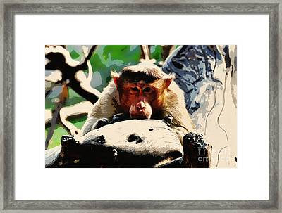 Thoughtful  Framed Print by Manjot Singh Sachdeva