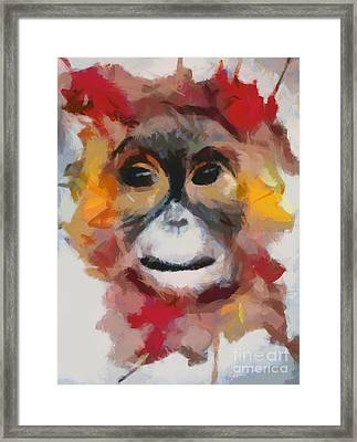 Monkey Splat Framed Print