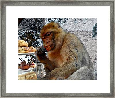 Monkey Tea Party Framed Print by Jan Steadman-Jackson