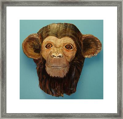 Monkey Time Framed Print