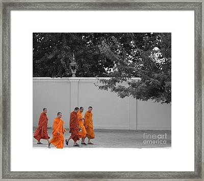 Monks On The Way Home Framed Print