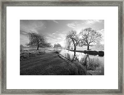Mono Bushy Park Uk Framed Print
