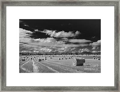 Mono Straw Bales Framed Print