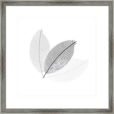 Monochrome Leaves Framed Print