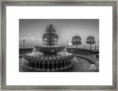 Monochrome Pineapple Framed Print