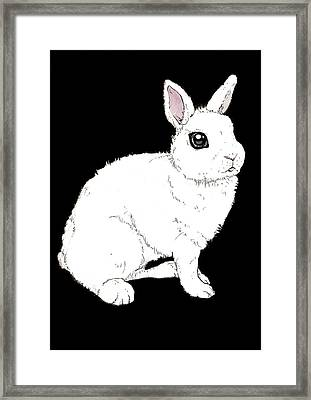 Monochrome Rabbit Framed Print by Katrina Davis