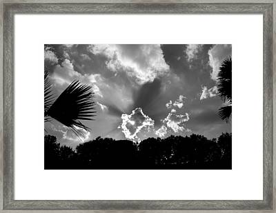 Monochrome Sunburst Framed Print