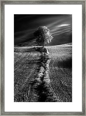 Monochrome Valley Framed Print
