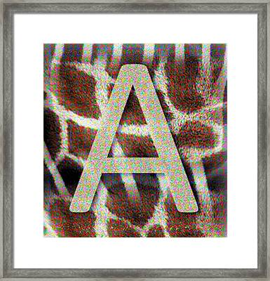 Monogram A Framed Print
