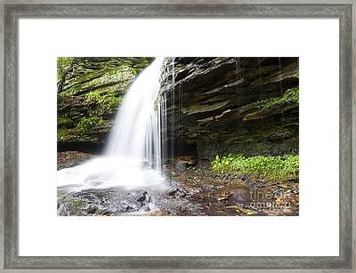Monongahela National Forest Waterfall Framed Print by Thomas R Fletcher