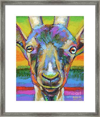 Monsieur Goat Framed Print by Robert Phelps