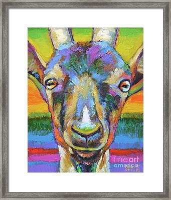 Monsieur Goat Framed Print