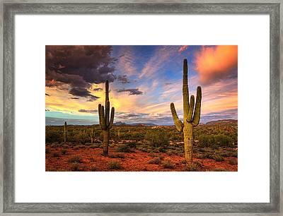 Monsoon Desert Sunset  Framed Print