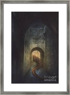Monster In Paris Framed Print
