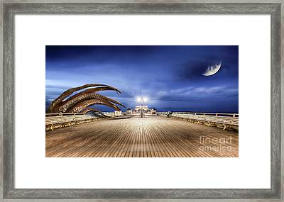 Monsters From The Deep Framed Print