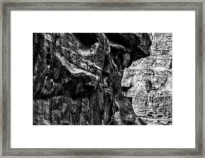 Monsters And Ibex Framed Print