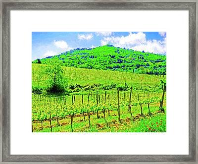 Montalcino Above A Vineyard Framed Print