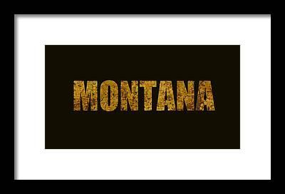 Designs Similar to Montana Gold