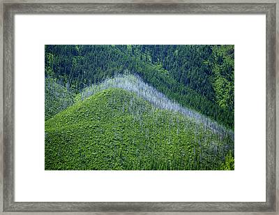 Montana Mountain Vista #4 Framed Print