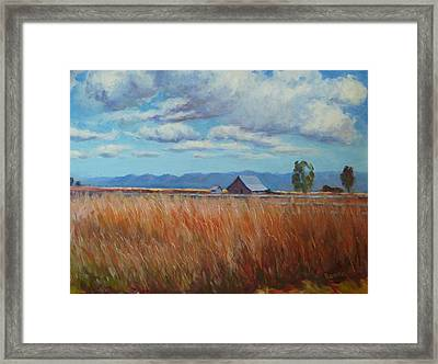 Montana Prairie In The Fall Framed Print