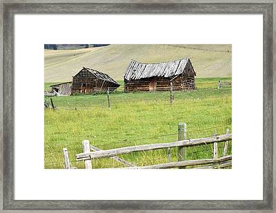 Montana Ranch Framed Print by Marty Koch