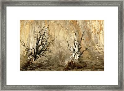 Montana Rock Wall Framed Print by Suzanne Lorenz