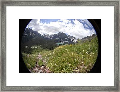 Montana Rolling Wildflowers Framed Print