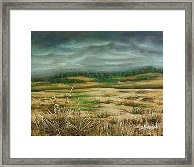 Montana Storm Framed Print by Angie Sellars