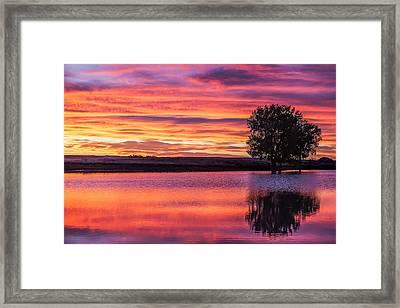 Montana Sunset Framed Print by Todd Klassy
