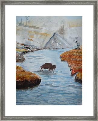 Montana Wildlife Framed Print by Warren Thompson