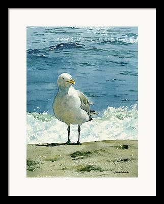 Ocean Shore Framed Prints