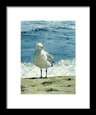Shores Framed Prints