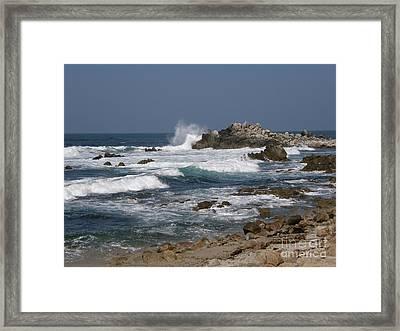 Monterey Coastline Framed Print
