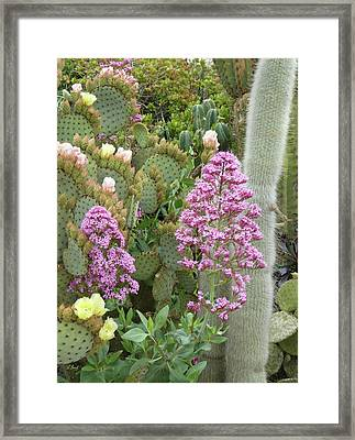Framed Print featuring the photograph Monterey Color by Gordon Beck