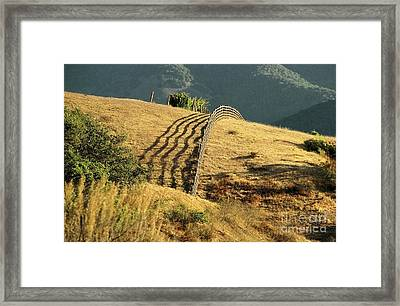 Monterey Hills Framed Print by Ellen Cotton