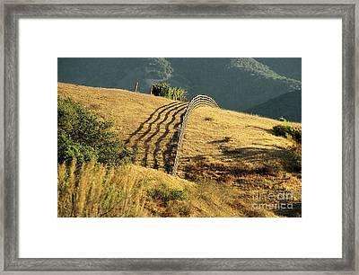 Monterey Hills Framed Print