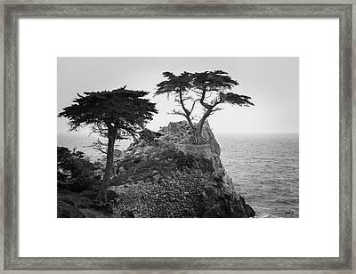 Monterey Peninsula II Bw Framed Print