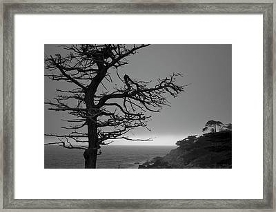 Framed Print featuring the photograph Monterey Penninsula I Bw by David Gordon