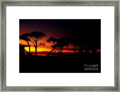Monterey Sunset Framed Print by Rick Maxwell
