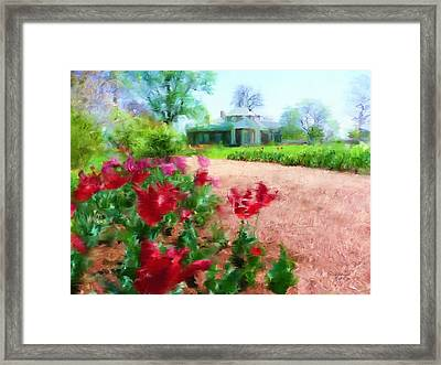 Monticello Framed Print by Cindy Wright