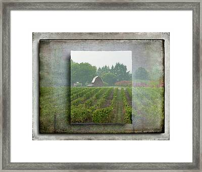 Framed Print featuring the photograph Montinore Winery by Jeffrey Jensen