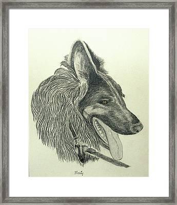 Monty Framed Print by Jim Justinick