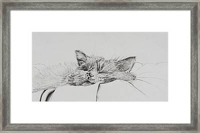 Monty  Sleepy Boy Framed Print by Vincent Alexander Booth
