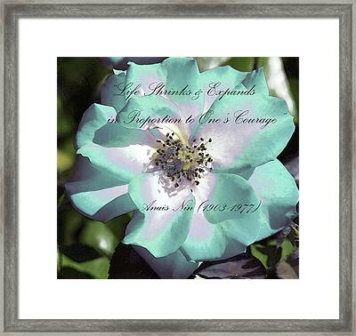 Montys Rose Framed Print