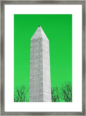 Monument Green Framed Print by Tina B Hamilton
