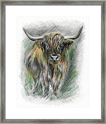 Moo Framed Print by MM Anderson
