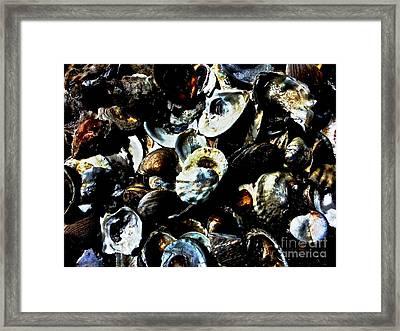 Mood Indigo Seashells Framed Print