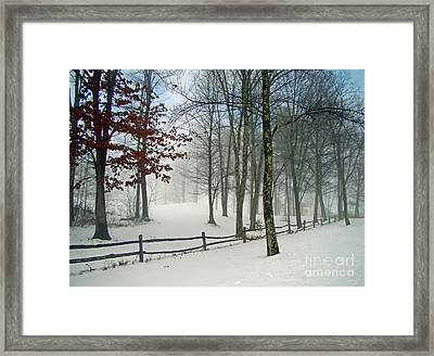 Mood Lifting Framed Print