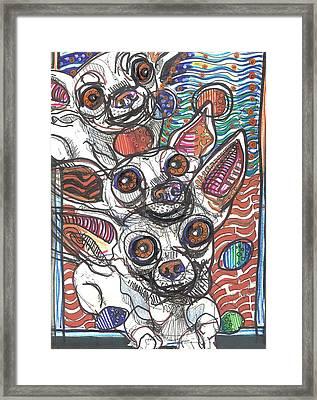 Moodswings Framed Print by Robert Wolverton Jr